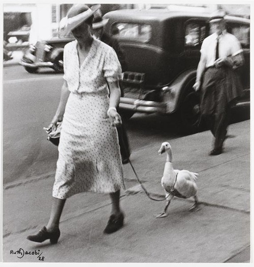 Ruth Jacobi, Spaziergang, New York 1928