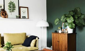Kötelező társbérlő - élet szobanövényekkel