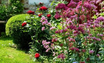 Májusi kertek