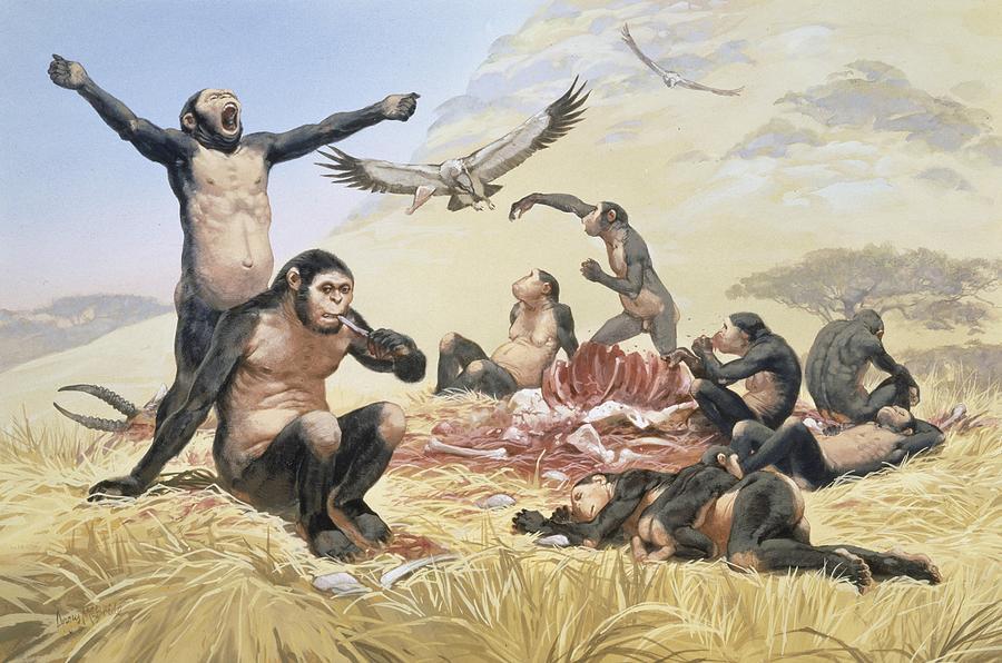 2-homo-habilis-hunting-artwork-science-photo-library.jpg