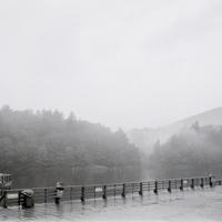 Medve-tó, 2010 ősz