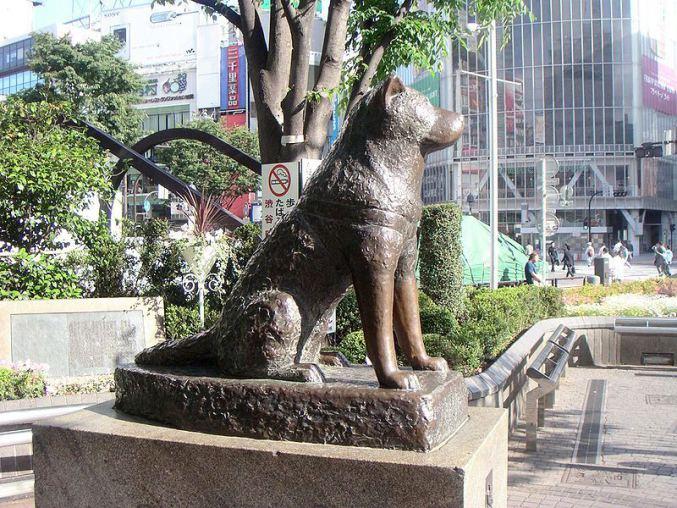 hachiko_to_the_shibuya_station_by_shiranui_candygod.jpg