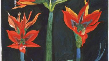 Joseph Stella - Red Amaryllis, c. 1929