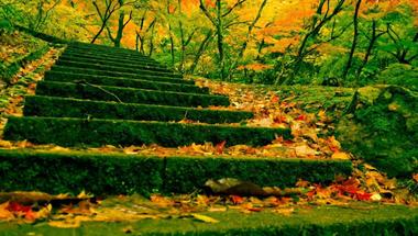 Azt hiszem az ősz...