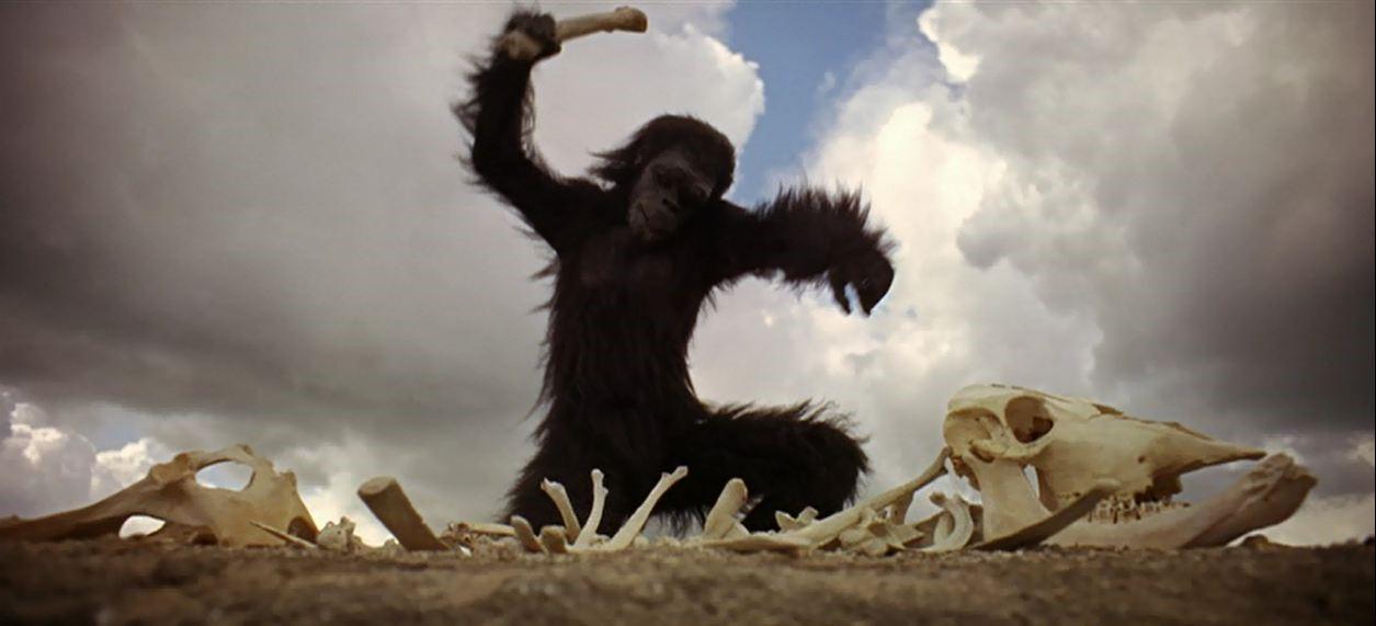 primate-ancestor.jpg
