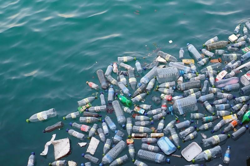 Life in plastic, it's not fantastic