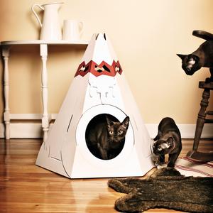 A két cica kunyhója