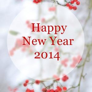 Újévi Nesze