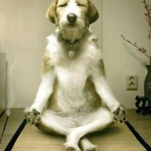 Tanulj meg meditálni egy pillanat alatt!