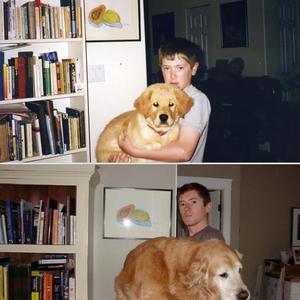 Állatira megnőttek!