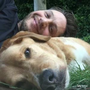 Tom Hardy elveszítette a kutyáját: szívszorító búcsú