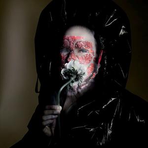 Az álarc mögött Björk látható