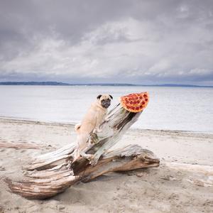 Hol a pizza???