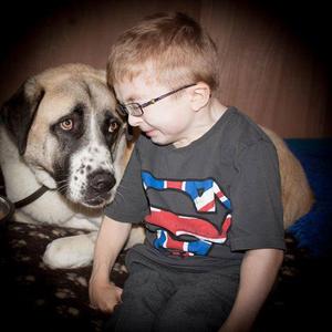 Haatchi és Owen: Egy igaz barátság története