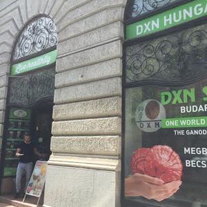 Egy kávézó, ami Budapesten van és a külföldi ismerőseink ajánlották!