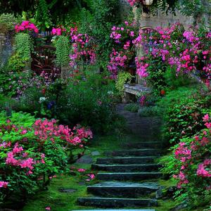Kertész, de nem Géza