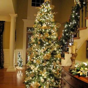 Karácsonyfa - költségek nélkül