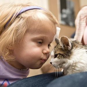 A 3 lábú cica lett az amputált karú kislány legjobb barátja