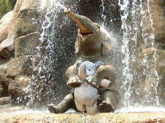 elefantos.jpg