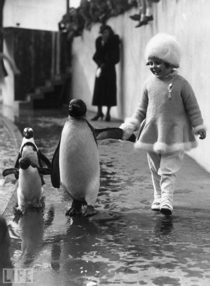 gyerekes_pingvines.jpg