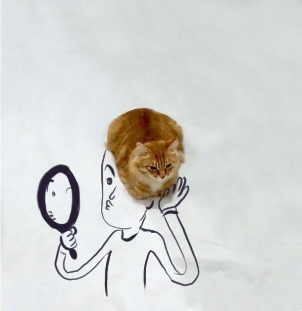 macska_fejdisz_meg.jpg