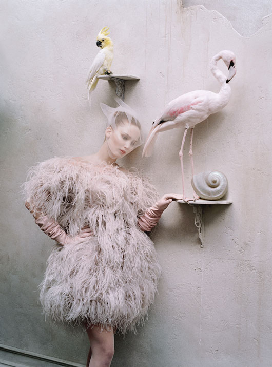 jennifer-lawrence-tim-walker-w-magazine-04.jpg