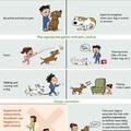 A legtöbb gyerek nem tudja, mi a kutya
