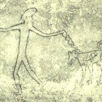 Beltenyészet okozta a 11 ezer éve terjedő rákot