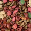 Csaló kereskedők - Vigyázzatok a kimért kutyakajával