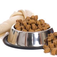 Hiperaktív és figyelemhiányos lehet a kutya a rossz minőségű táptól