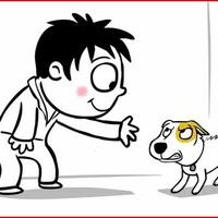 Miért versz át, kutyabarát?