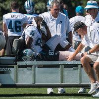 A Panthers lemondott a sérült elkapóról