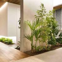 Kreatív tervezés: egyedi, beépített helyek a szobanövényeknek!