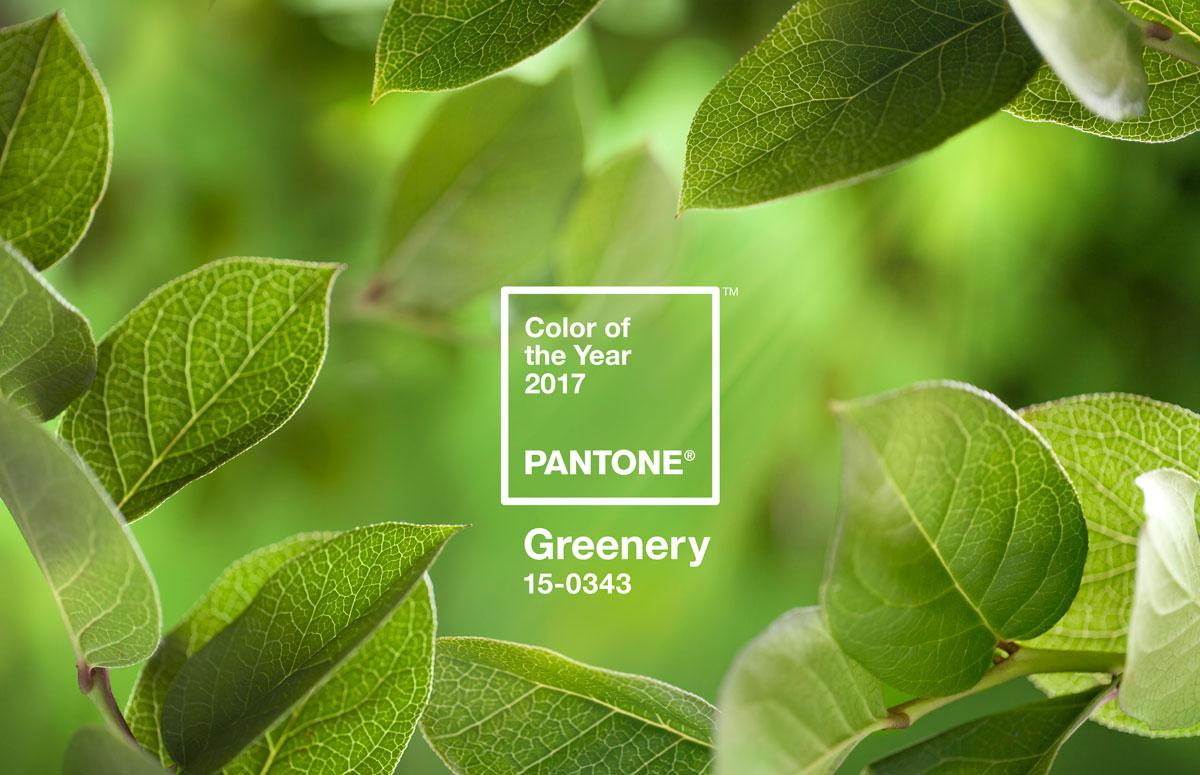 pantone-coy2017-heroshot2-rgb.jpg