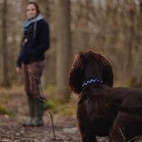 Hogyan lesz a kutyázás a személyes erőforrásod?