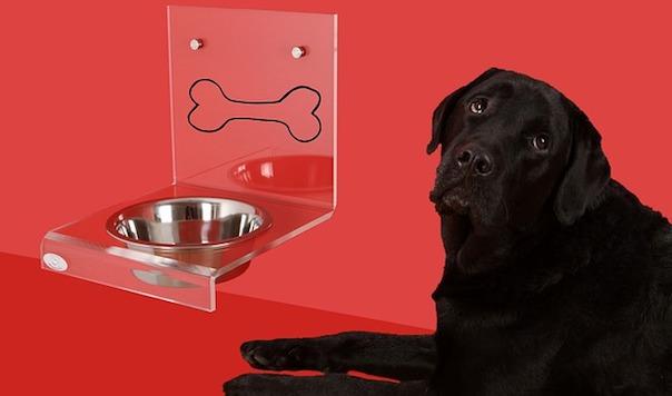 dog-bowl-2006373_640.jpg