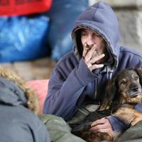 Hajléktalan őslakosok, dőzsölő bevándorlók – A muszlimok egész Németországot akarják