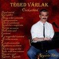 Óbuda zenészei - Gyuris Tibor a Vidocqból