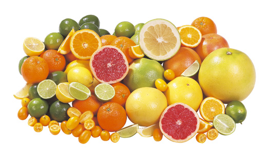 A citrusfélék eredete