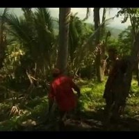 Utazások a földgolyón - Pápua Új-Guinea szigetei