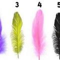 Melyik toll vagy te?