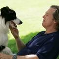 Kutya egy év (2009)
