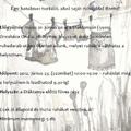Ökoteregetés Orosházán