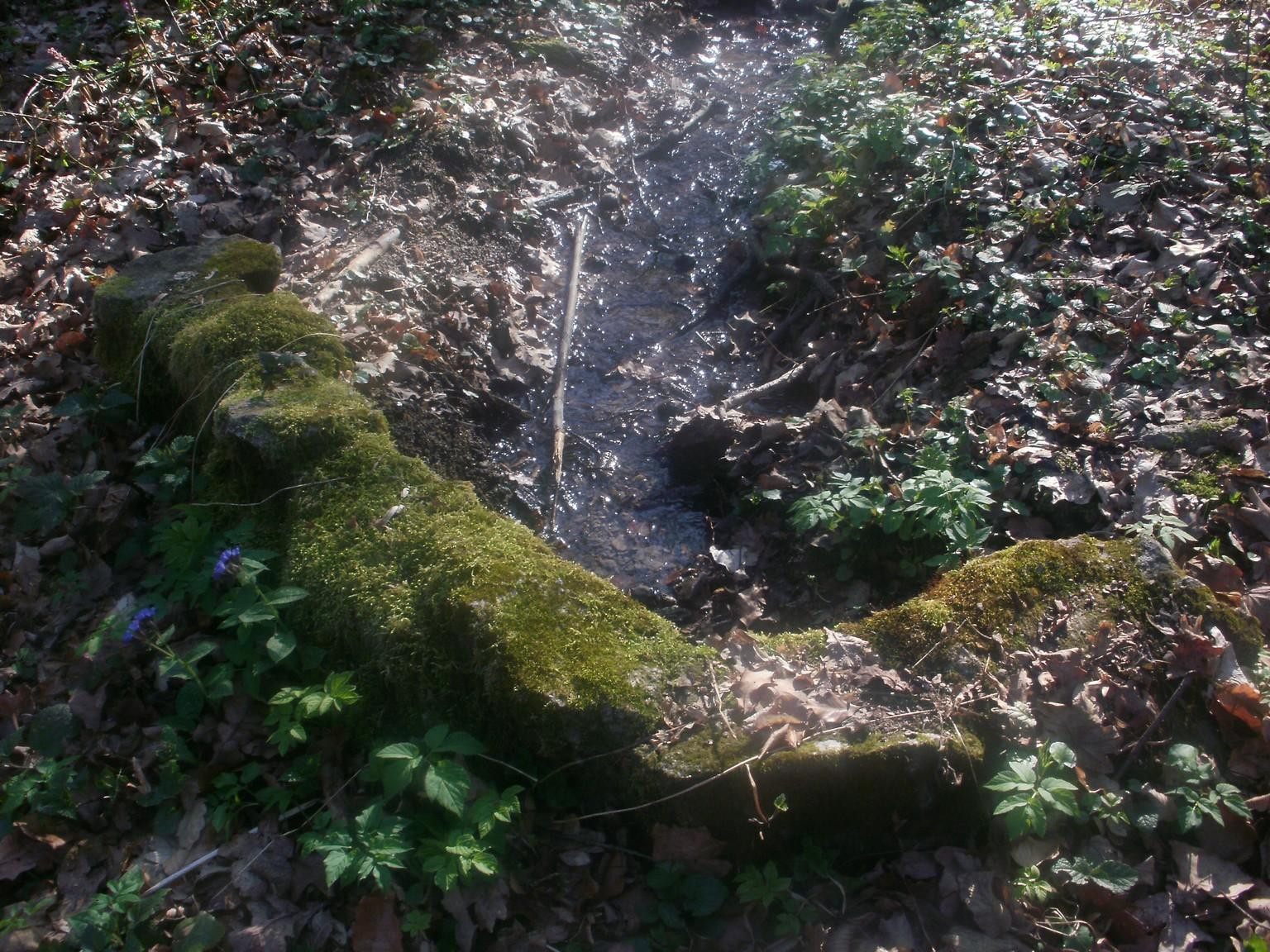 Haramia forrás vize