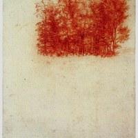 Fák, 1502, Leonardo da Vinci