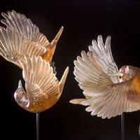 Springbirds