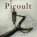 Jodi Picoult: Elrabolt az apám
