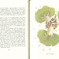 A kis herceg - 5.fejezet - 22. oldal