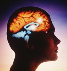 Omega-3: az agy tápláléka
