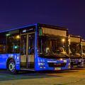 Forgalomba álltak a VT-Arriva új buszai a fővárosban